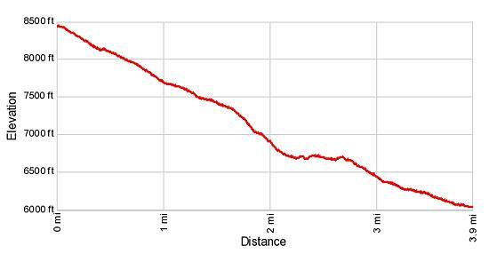 Elevation Profile for Plattjen to Saas Fee Hike