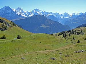 Great views of the Bernese Oberland peaks on the descent to Schynige Platte