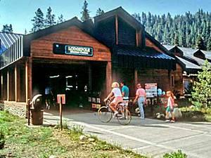 Lodgepole Information