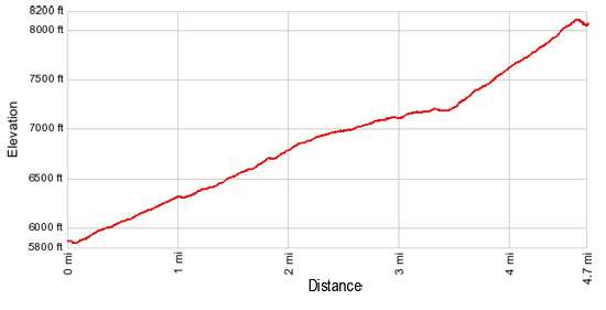 Elevation Profile Siyeh Pass