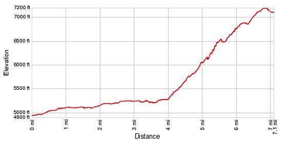 Elevation Profile - Swiftcurrent Pass