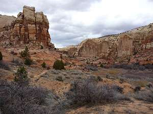 Rock outcropping along the west wall of Calf Creek