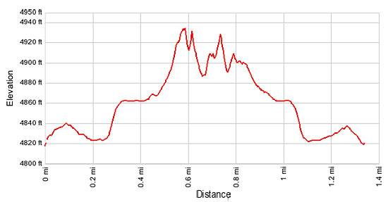 Elevation profile - Lower Mule Canyon
